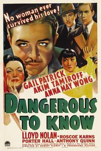 dangerous-to-know